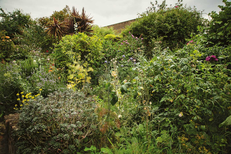 frontpage_garden-1