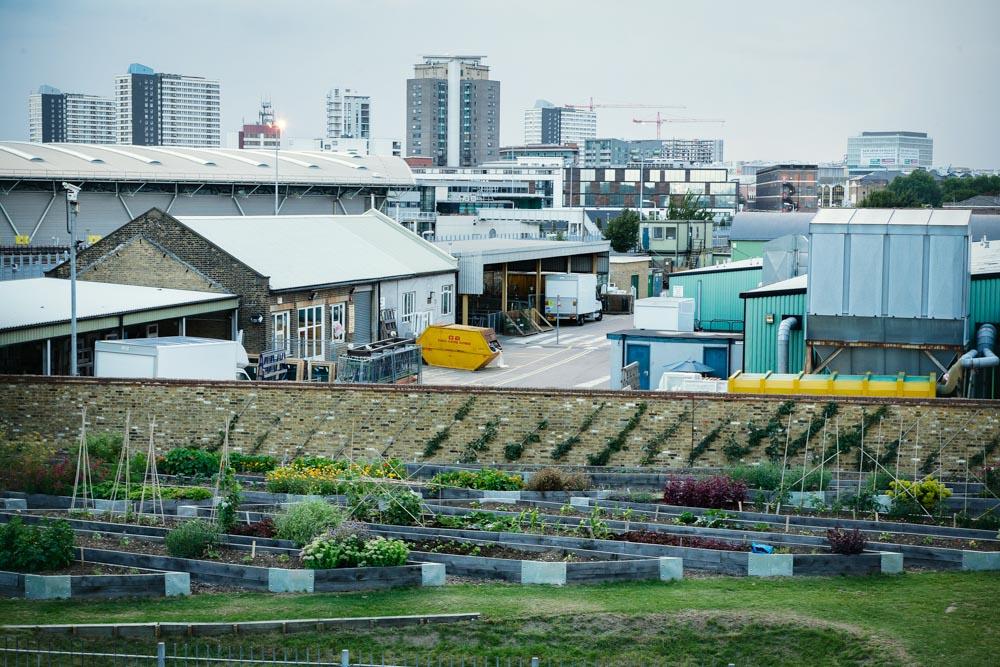 horticulturedcities-16