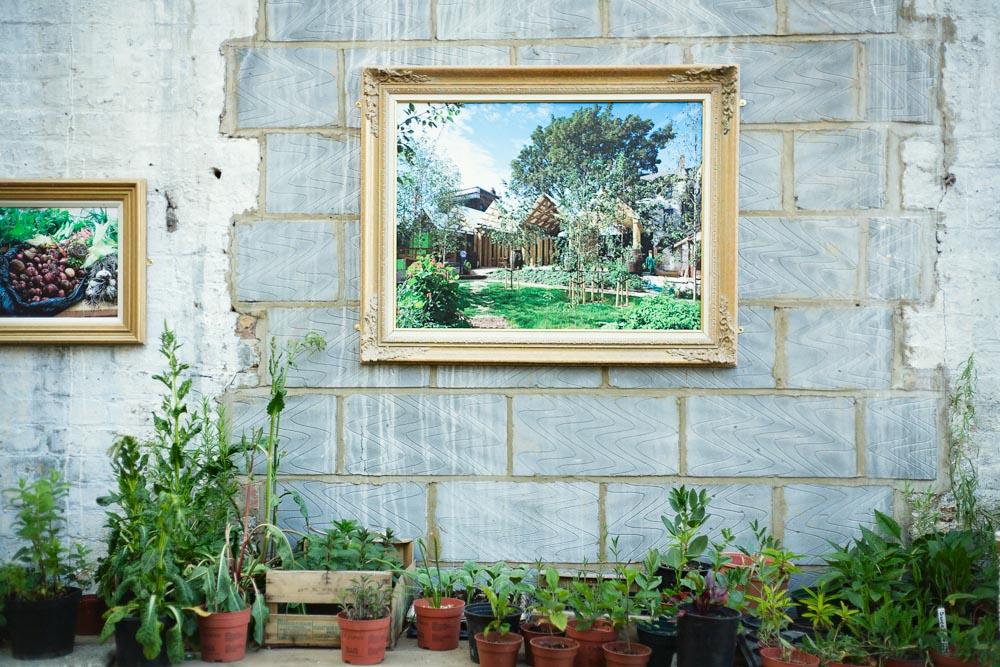 horticulturedcities-5